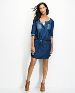 Superwashed Chambray Shirtdress